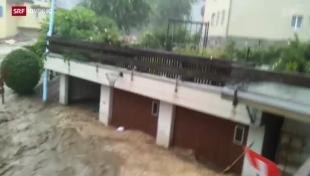 Video «10vor10 vom 29.07.2014» abspielen