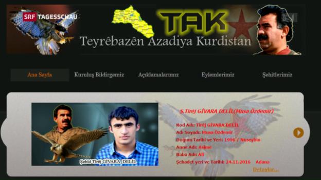 Video «Die Freiheitsfalken Kurdistans bekennen sich» abspielen
