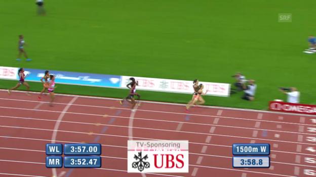 Video «Leichtathletik: Weltklasse Zürich, 1500 m Frauen, Schlussphase» abspielen