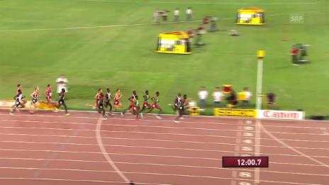 Video «Leichtathletik WM: 5000 m Männer Final» abspielen