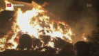 Video «Brandstifter in der Schweiz» abspielen