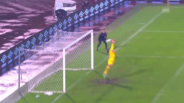 Video «Fussball: Serbien-Portugal» abspielen