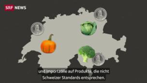 Video «Wie viel und welche Landwirtschaft braucht die Schweiz?» abspielen
