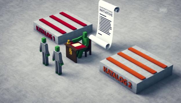 Video «So funktioniert die Durchsetzungsinitiative» abspielen