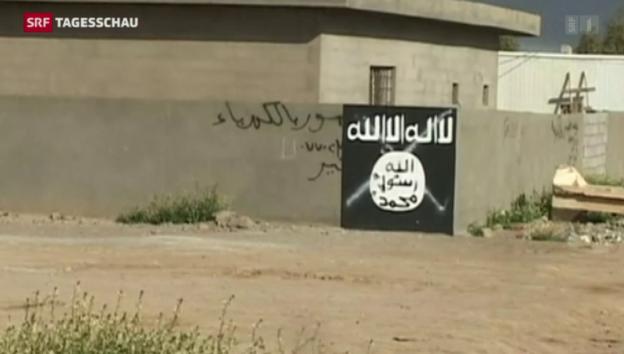 Video «Tikrit vor dem Fall» abspielen