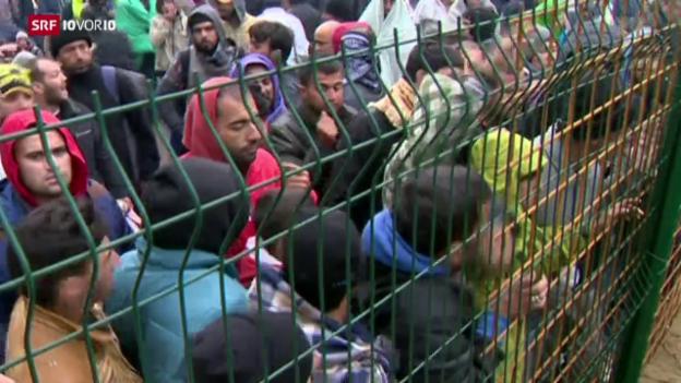 Video «Flüchtlinge überfordern Slowenien» abspielen