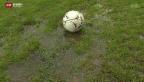 Video «Streit um Fussballplatz in Ipsach» abspielen