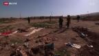Video «FOKUS: Sinjar – der Todesberg» abspielen
