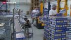 Video «Schweizer Firmen profitieren vom Freihandelsabkommen mit China» abspielen