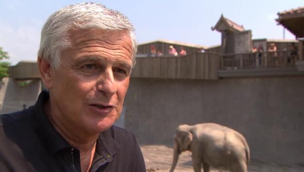 Video «Franco Knie über das Aus der Elefanten-Zirkusnummer» abspielen