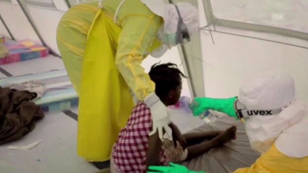 Video «Die Helfer vor Ort sehen sehr viel Verzweiflung.» abspielen