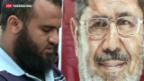 Video «Ägypten-Krise: Muslimbrüder lehnen Versöhnungsangebot ab» abspielen