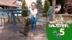 Video «Selinas Katzendame Mimi» abspielen