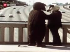 Video «Fischli und Weiss laden zur Retrospektive» abspielen