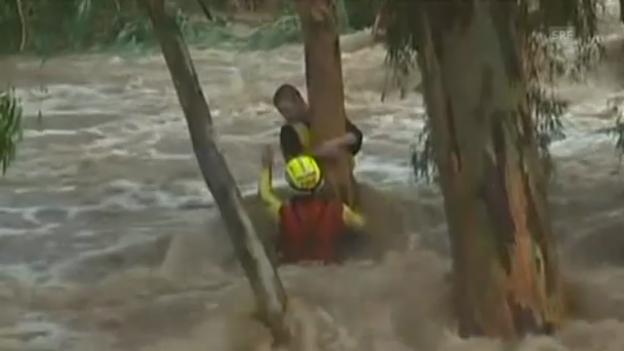 Video «Junge aus Fluten in Australien gerettet.» abspielen