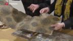 Video «Second-Hand-Schätze vom Bau» abspielen