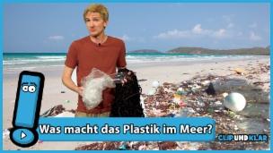 Video «Wie kommt das viele Plastik ins Meer?» abspielen