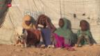Video «In Afrika und Vorderasien droht der Hungertod» abspielen