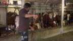 Video «Die Hausaufgaben der Bauern» abspielen