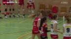 Video «Volleyball: Sm'Aesch Pfeffingen im Porträt» abspielen