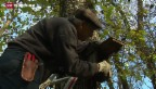 Video «Grosse Putzaktion zum Schutz der Vögel» abspielen