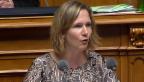 Video ««Der Gripenkauf ist reine Geldverschwendung»» abspielen