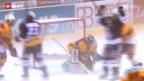 Video «NHL-Schweizer zurück auf NLA-Eis» abspielen