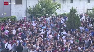 Video «FOKUS: Aktuelle Entwicklung der Flüchtlingskrise» abspielen