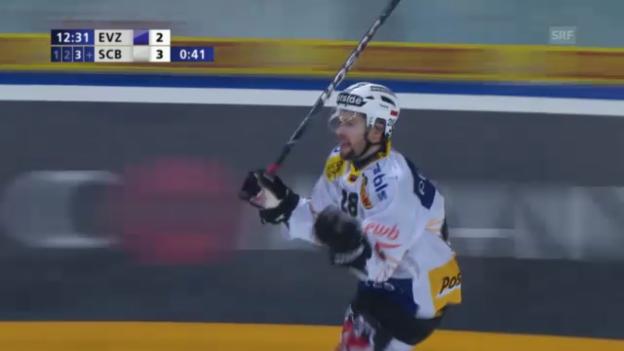 Video «Highlights Zug - Bern («sportlive»)» abspielen