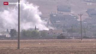 Video «IS-Terroristen in Kobani?» abspielen