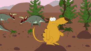 Video «Der jugendliche Hornträger - Triceratops» abspielen