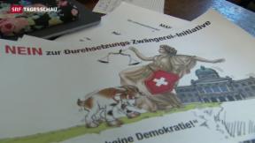 Video «Bundespolitiker gegen Durchsetzungsinitiative» abspielen