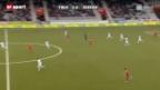 Video «SL: Thun - Zürich» abspielen