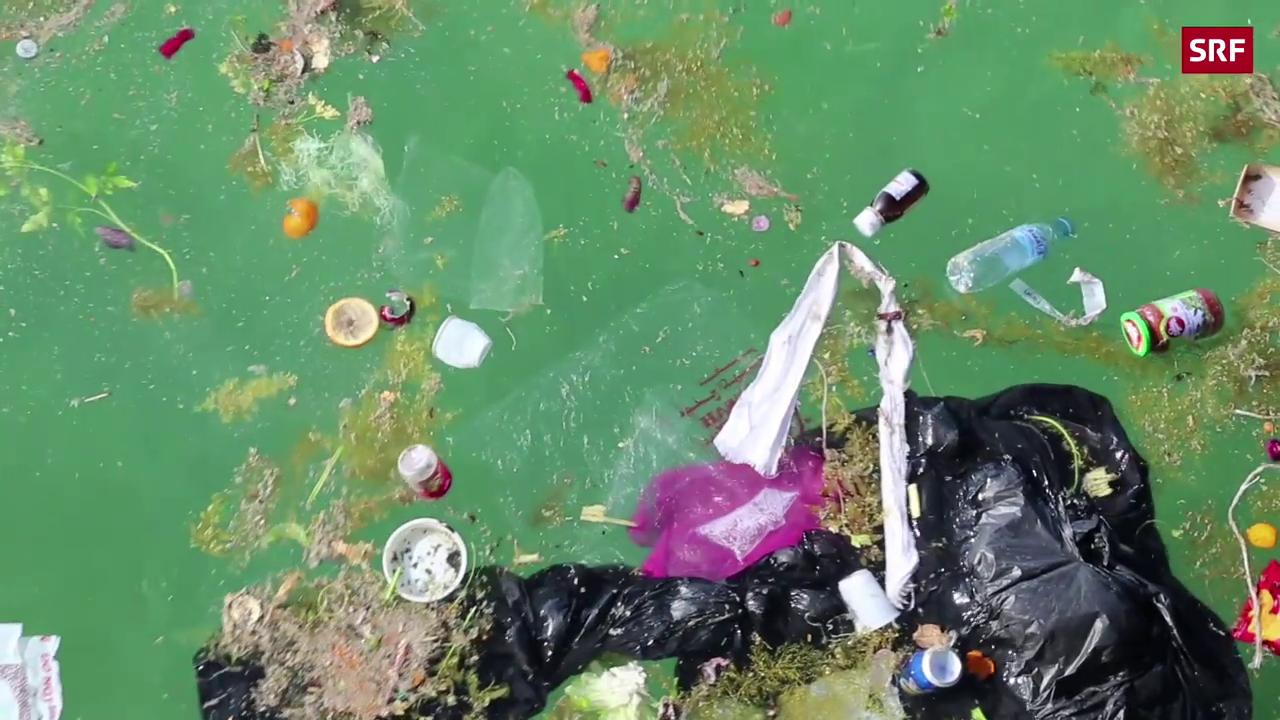 Schweizer will die Weltmeere säubern