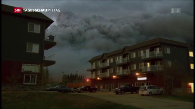Video «Mehrere Brände komplett ausser Kontrolle» abspielen