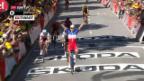 Video «Démare gewinnt TdF-Chaos-Etappe im Sprint» abspielen