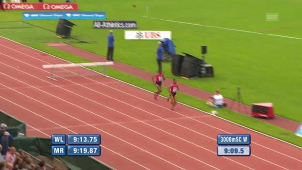 Video «3000 m Steeple Frauen» abspielen