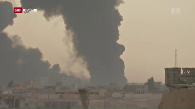 Video «Offensive auf Mosul steht offenbar kurz bevor» abspielen