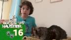 Video «Andri und sein Kater Ferdinand» abspielen