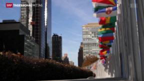 Video «UNO-Sicherheitsrat verurteilt Anschlag auf saudische Botschaft» abspielen