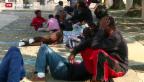 Video «Zu viele Flüchtlinge in Mailand» abspielen