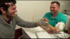 Video «Erste künstliche Hand mit Tastsinn» abspielen