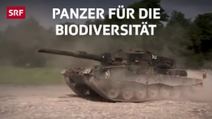 Video «Das Gartenwerkzeug der Soldaten» abspielen
