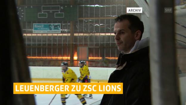 Video «Sven Leuenberger zu den Lions» abspielen