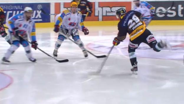 Video «Eishockey: Bern - Freiburg («sportlive»)» abspielen
