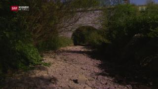 Video «Wassermangel, Schweizer Essiggurken, Im Schatten der Burg» abspielen