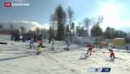 Video «Cologna scheidet im Sprint aus» abspielen