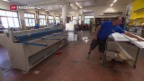 Video «Tessin kämpft gegen Schwarzarbeit» abspielen