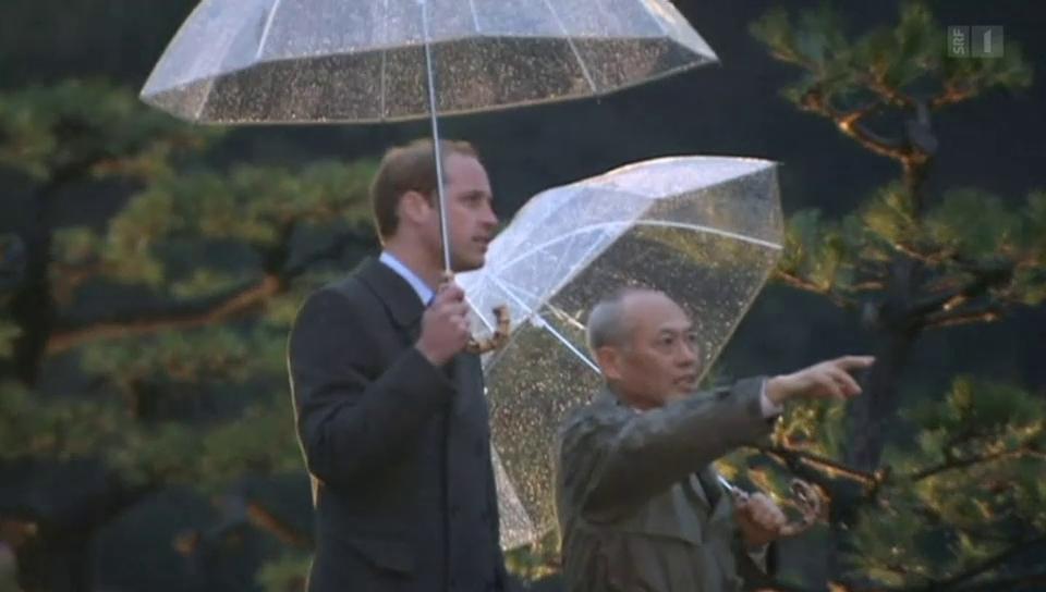 Prinz William: Big in Japan