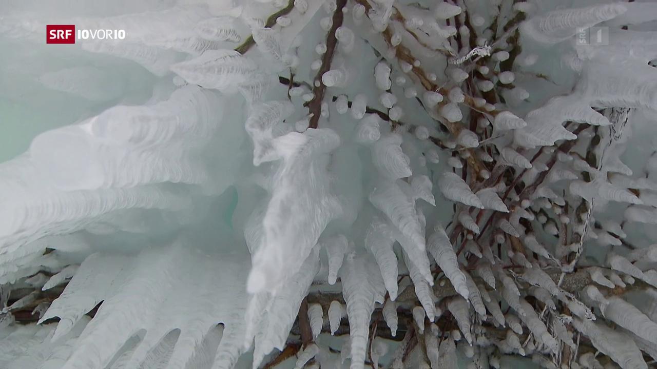 «Die Idee»: Eistürme als Wasserspeicher